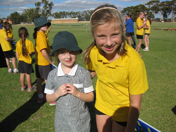 Teaching Collaborative Governance ~ School overview hyden primary